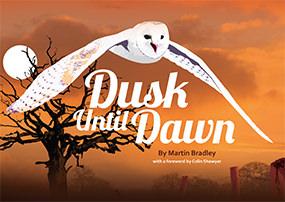 Dusk until Dawn - Book 2 - By Martin Brabley