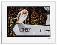 romsey copy