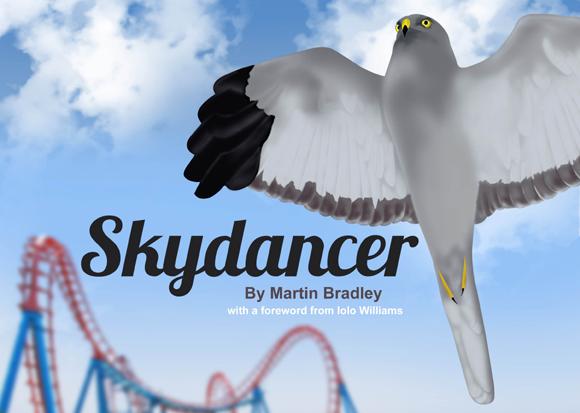 Skydancer helps Hen Harrier Ireland