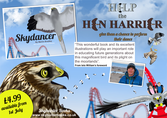 Skydancer plight of the hen harrier goes to print!