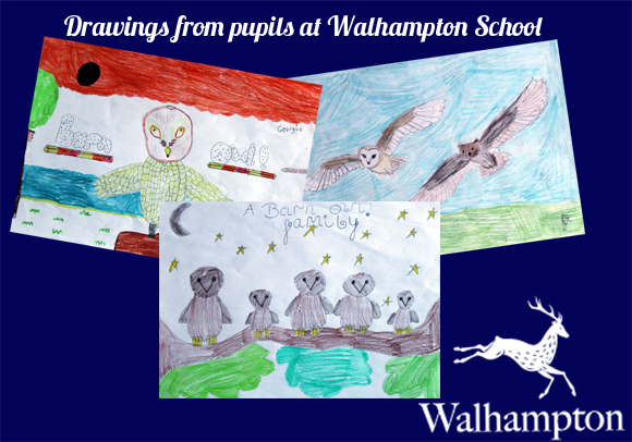Walhampton School Artwork