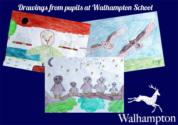Walhampton School Artwork