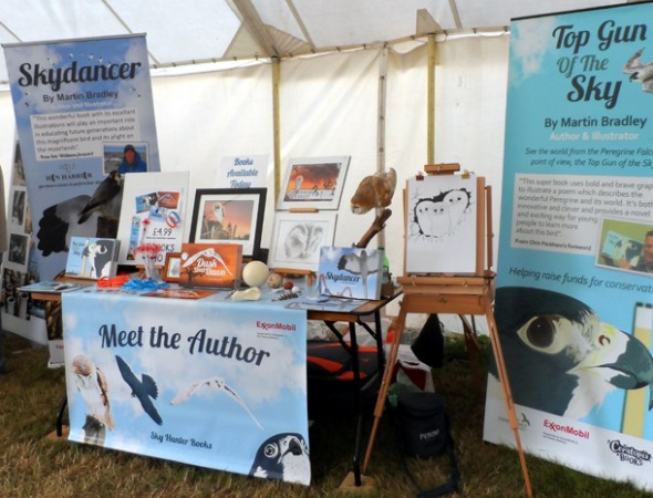 New Forest Show 2015 Discovery Zone